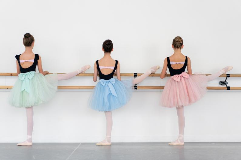 NK Ballet Foundation Gallery (1)