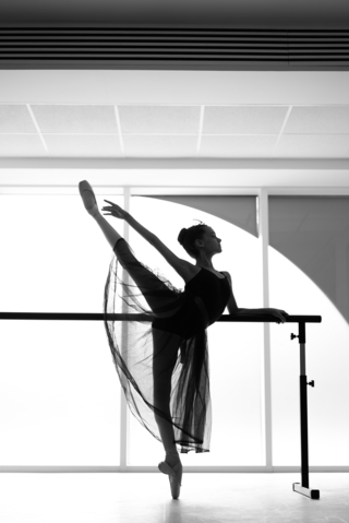 NK Ballet Foundation Gallery (6)