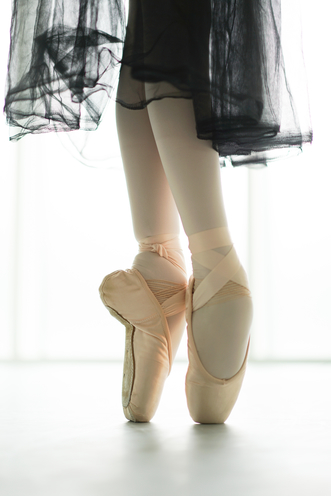NK Ballet Foundation Gallery (8)