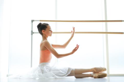 NK Ballet Foundation Gallery (2)
